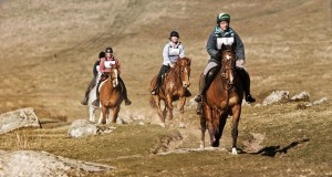 Warhorse-sliders4