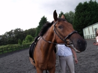 Horse Riding with PH Holidays